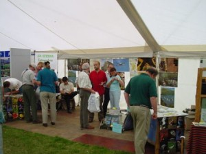2001 stand 8